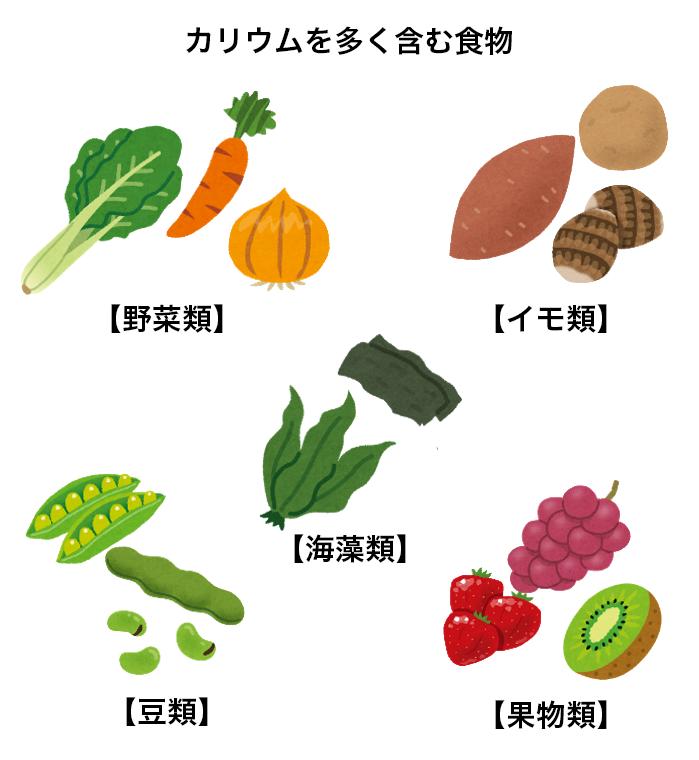 カリウム 多い 食べ物